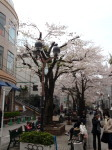 jiyugaoka130.jpg
