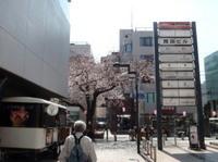 jiyugaoka223.jpg