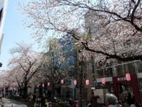 jiyugaoka224.jpg