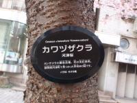 jiyugaoka263.jpg