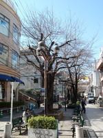 jiyugaoka265.jpg