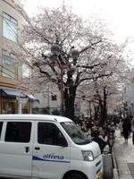 jiyugaoka280.jpg