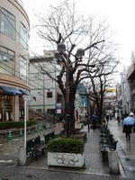 jiyugaoka361.jpg