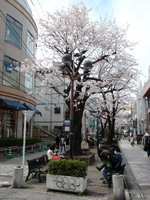 jiyugaoka366.jpg