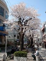jiyugaoka368.jpg