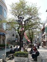 jiyugaoka373.jpg