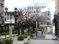 jiyugaoka437.jpg