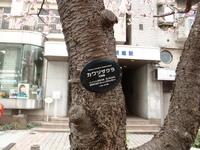 jiyugaoka439.jpg