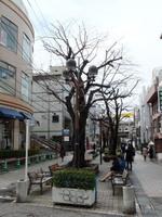 jiyugaoka440.jpg