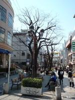 jiyugaoka448.jpg
