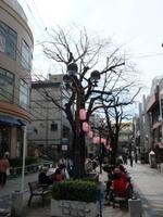 jiyugaoka455.jpg
