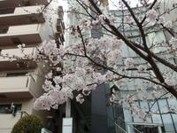 jiyugaoka468.jpg