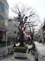 jiyugaoka470.jpg