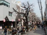 jiyugaoka472.jpg