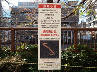 megurogawa22.jpg