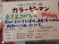 naturalharmony3.JPG
