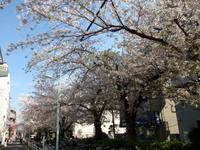 nomigawa2.jpg