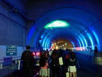 tunnelwalk9.jpg